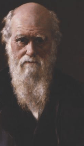 Darwin Quotes, Assembled - Greg Laden's Blog